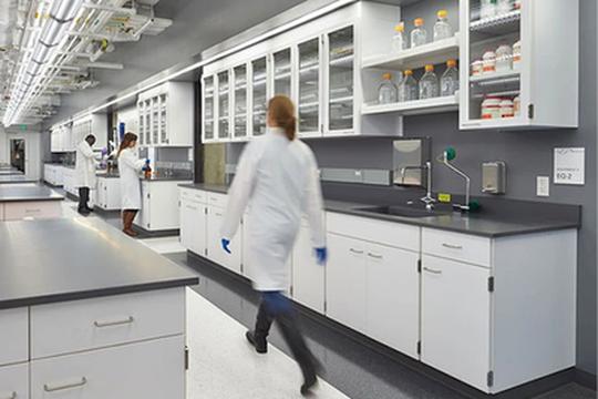 Gli in silico trials: una nuova tecnologia per testare possibili terapie contro il coronavirus